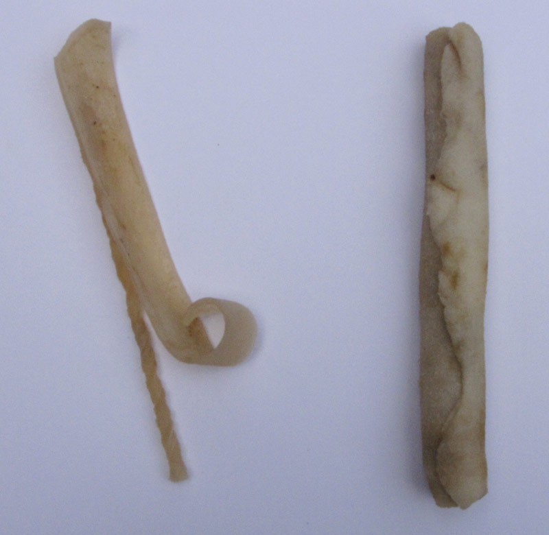 The Rawhides After Testing