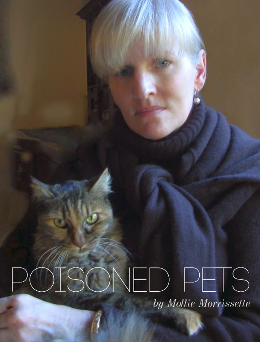 Mollie Morrissette and Pussy Kitten on Poisoned Pets